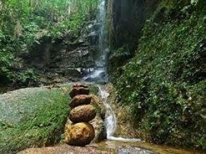 Foto de Floresta da Tijuca