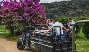 Passeio de Jeep em Petrópolis
