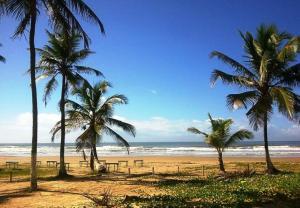 Passeio Praias do Litoral Sul